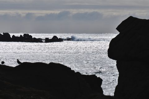 太洋を望む丘 2 b9ba3003.jpg