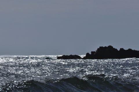 大波を求めて 3m DSC_4000-2-c.jpg