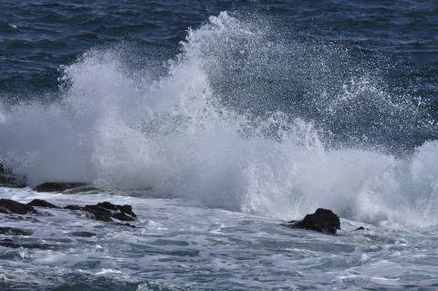 大波を求めて 5m DSC_4023-2.jpg